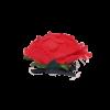 Flor Flamenca Valencia Mescla com passador